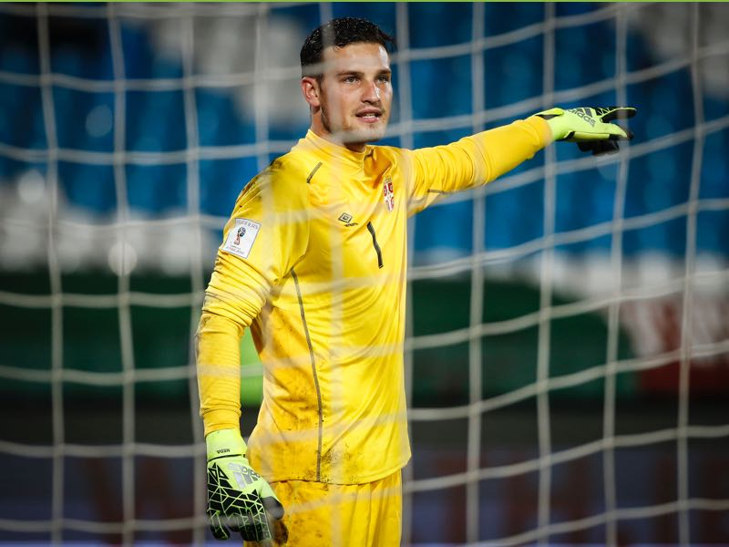 Serbia's national team goalkeeper Pedrag Rajković is one to watch. (Photo by Srdjan Stevanovic/Getty Images)
