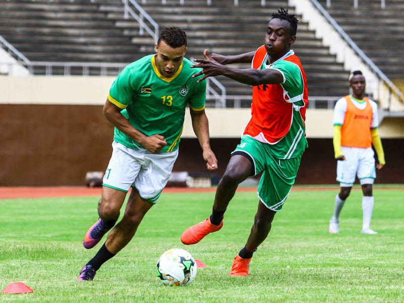 Tino Kadewere (r.) is a Zimbabwean national team player (JEKESAI NJIKIZANA/AFP/Getty Images)